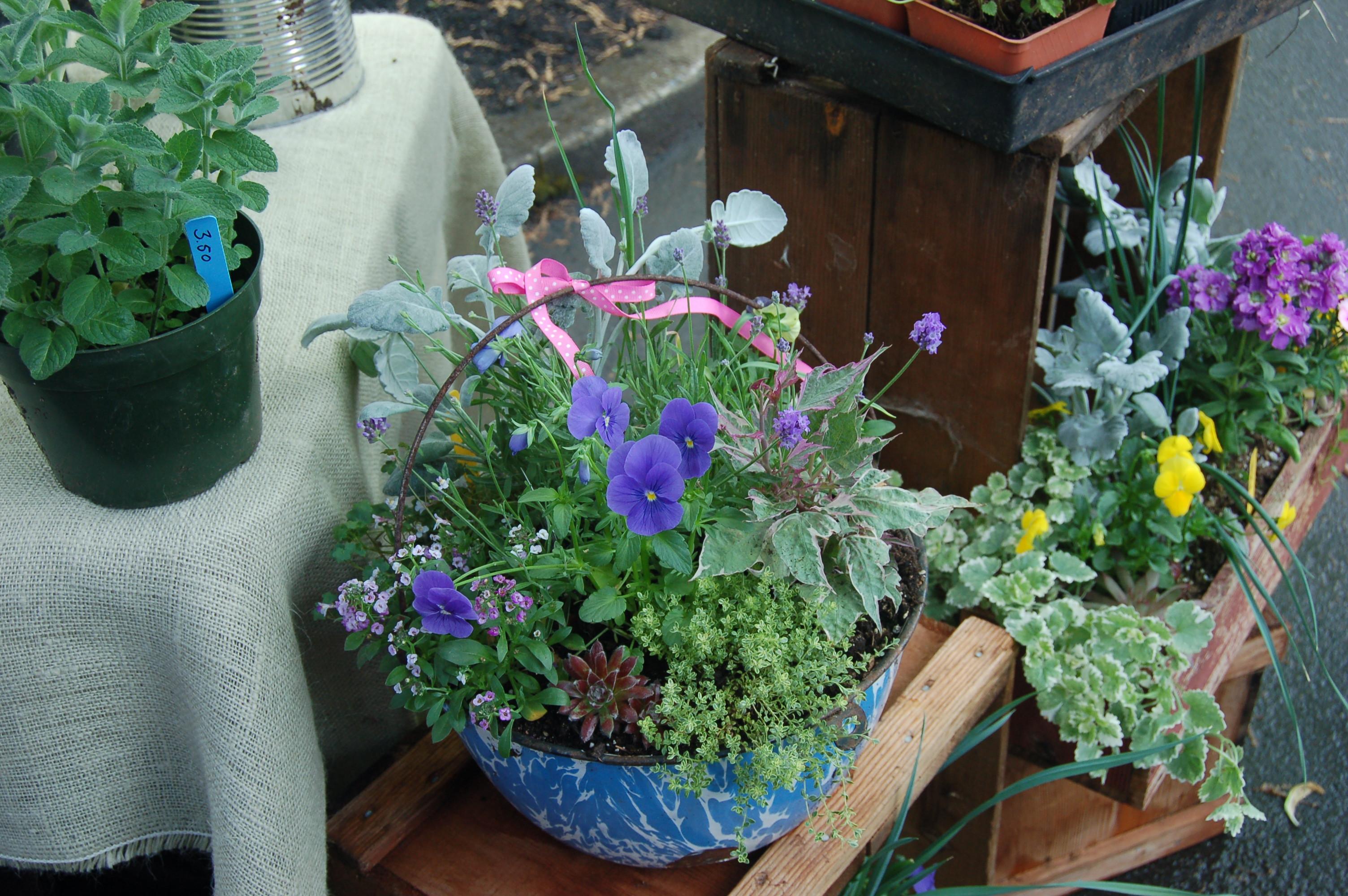 Camas Plant and Garden Fair 2014 (103)