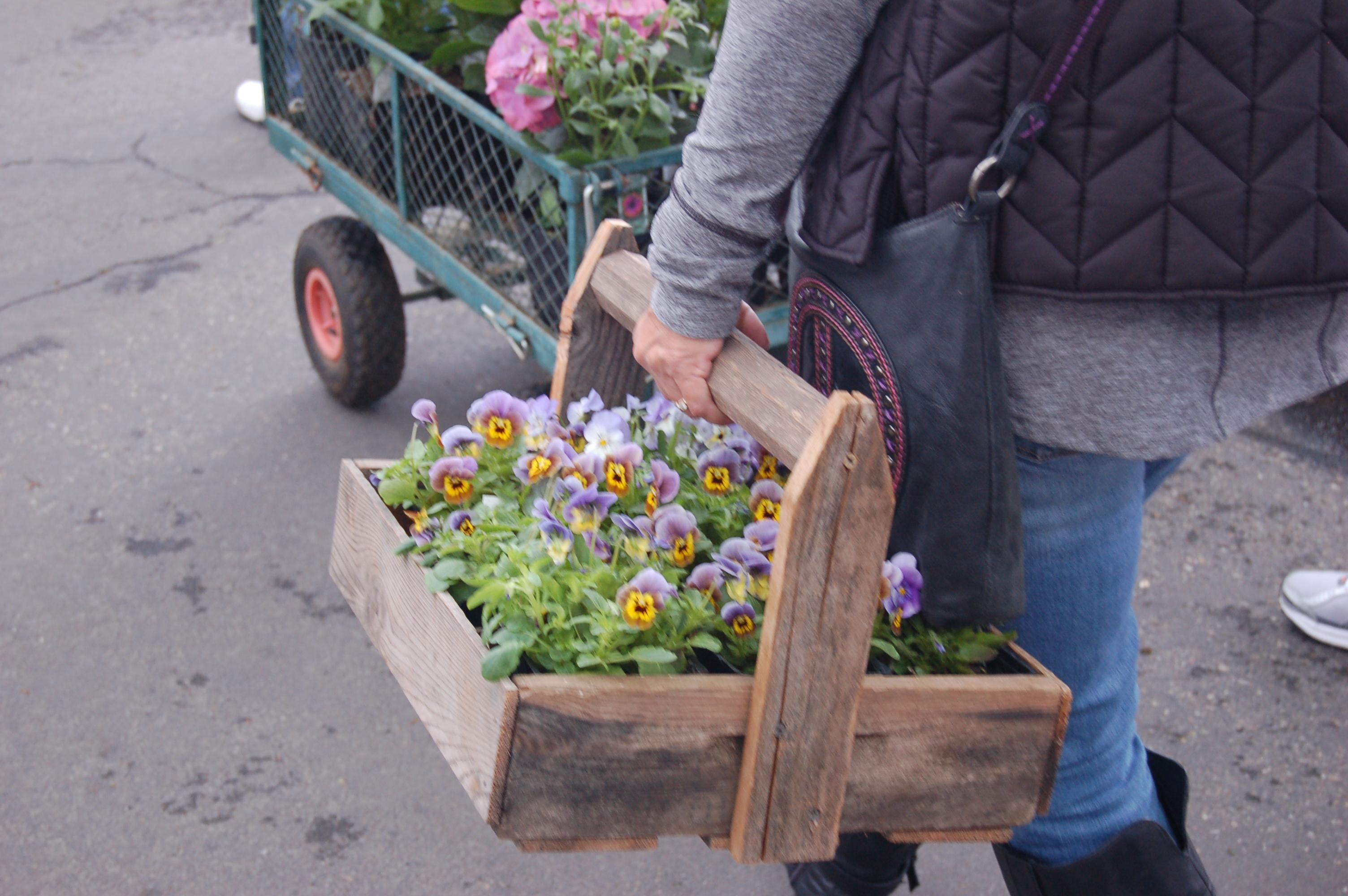 Camas Plant and Garden Fair 2014 (241)