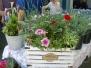 2016 Plant & Garden Fair